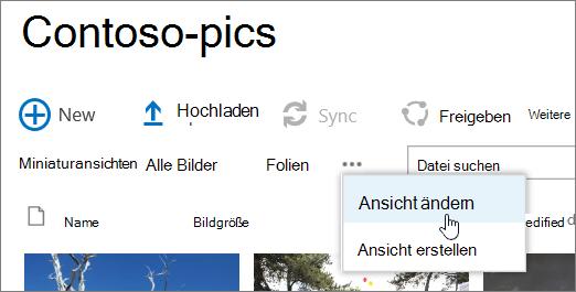 Symbolleiste ' Bildbibliothek ' mit ausgewählter Ansicht ' ändern '