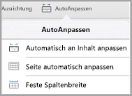 iPad: Optionen für AutoAnpassen