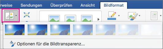 """Auf der Registerkarte """"Bildformat"""" ist """"Transparenz"""" hervorgehoben."""