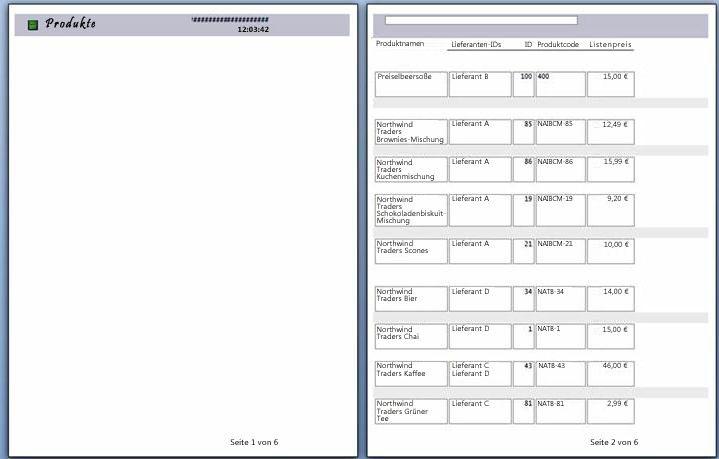 Vorschau der Berichtseiten mit eingefügtem Seitenumbruch