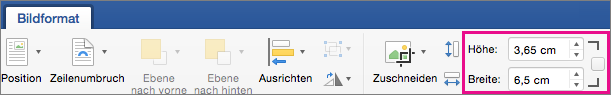 "Registerkarte ""Bildformat"" mir den hervorgehobenen Feldern ""Höhe"" und ""Breite"""