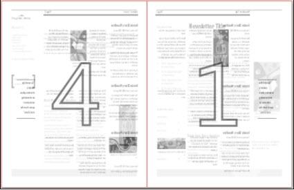 Seitenansicht einer Newsletterpublikation im Tabloid-Format (27,94 x 43,18 cm)