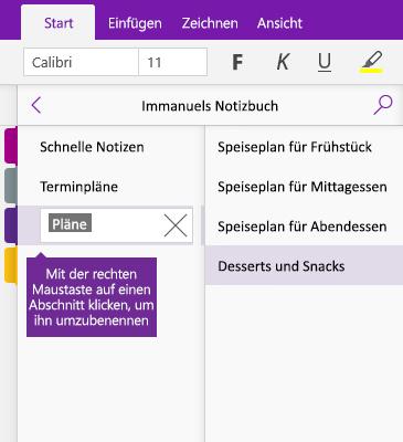 Screenshot eines Abschnitts, der in OneNote umbenannt wird