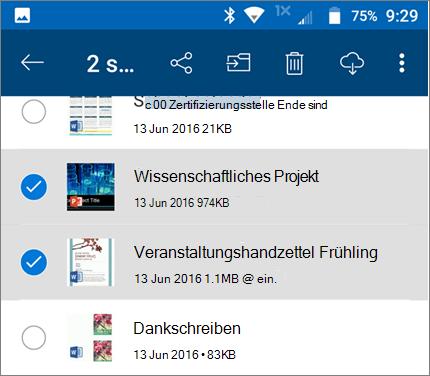 Ausgewählte Dateien