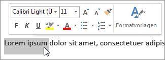 Minisymbolleiste und markierter Text