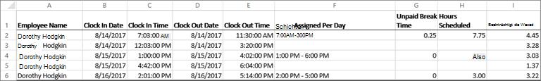 Beispiel Zeit Takt Daten für einen Mitarbeiter