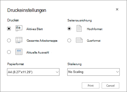 Einstellungen Druckoptionen nach Klicken auf Datei > Drucken