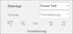 Bildschirmausschnitt zeigt das Datentypfeld.