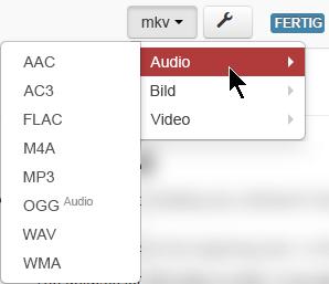 """Mit den Optionen unter der Schaltfläche """"Format"""" können Sie angeben, in welches Medienformat konvertiert werden soll."""