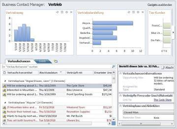 Arbeitsbereich 'Vertrieb' in Business Contact Manager ohne Menüband und Navigationsbereich.