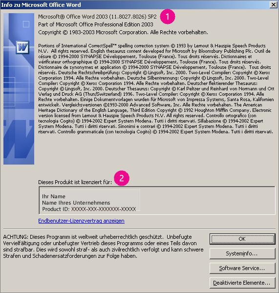 """Fenster """"Info"""" in Microsoft Office Word 2003"""