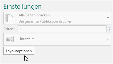 Layoutoptionen in den Publisher-Druckeinstellungen