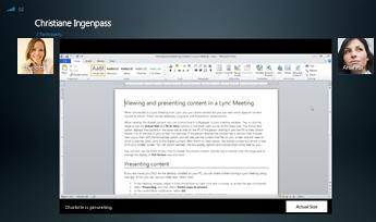 Screenshot einer Sitzung mit Programmfreigabe mit angezeigter Option 'Originalgröße'