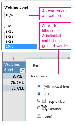 Online gehostete Umfragen in Excel - Office-Support