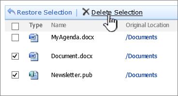 """Dialogfeld für SharePoint 2007-Papierkorb mit Hervorhebung von """"Auswahl löschen"""""""
