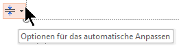 """Das Tool """"Optionen automatisch anpassen"""" wird angezeigt, wenn ein Platzhalter mit Text gefüllt wird."""