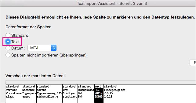 Schritt 3 im Textkonvertierungs-Assistenten