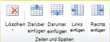 Gruppe 'Tabellenzeilen und -spalten' in Publisher 2010