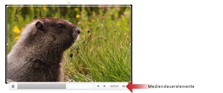 Mediensteuerelemente