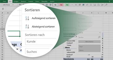 Excel-Arbeitsblatt mit einer PivotTable sowie einem Zoom auf einer Auswahl von verfügbaren Features