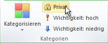 Private Befehl in der Gruppe Kategorien auf der Multifunktionsleiste