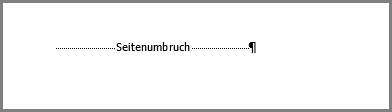 Ein Seitenumbruch am unteren Rand einer Seite in Word