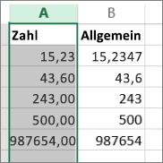 Beispiel für die Anzeige von Zahlen mit unterschiedlichen Formaten wie 'Zahl' und 'Allgemein'