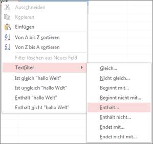 Kontextmenü mit den Filteroptionen für Textfelder