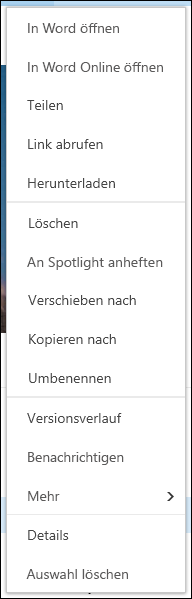 Office 365 – Menü eines Elements der Dokumentbibliothek