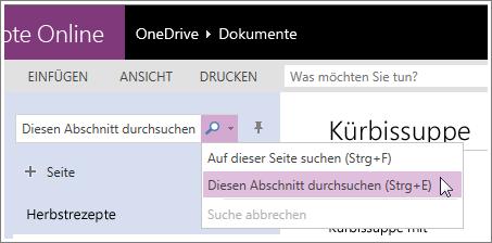 Screenshot zum Durchsuchen eines Abschnitts in OneNote Online