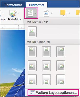 """Auf der Registerkarte """"Bild formatieren"""" sind die Optionen """"Position"""" und """"Weitere Layoutoptionen"""" hervorgehoben."""