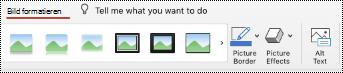 """Schaltfläche """"Alternativtext"""" im Menüband für ein Bild in PowerPoint für Mac."""