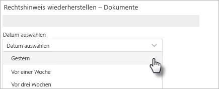 """Abbildung mit den Optionen für """"Datum auswählen"""""""