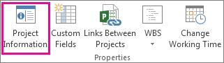 'Projektinformationen' auf der Registerkarte 'Projekt'