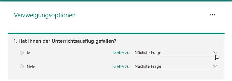 """Seite """"Verzweigungsoption"""""""