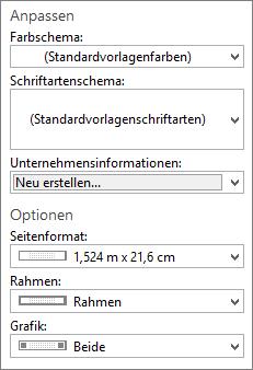 Screenshot der Publisher-Auswahlmöglichkeiten für Anpassungen und Optionen