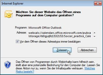 Dialogfeld zum Zulassen der Ausführung eines Programms durch eine Website