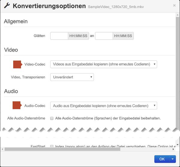 """Das Dialogfeld """"Konvertierungsoptionen"""" enthält Optionen für den Video-Code und den Audio-Codec"""