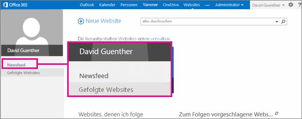Screenshot der Seite 'Websites' mit hervorgehobenem Link 'Newsfeed'