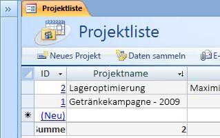 Die Vorlage für die Projektedatenbank