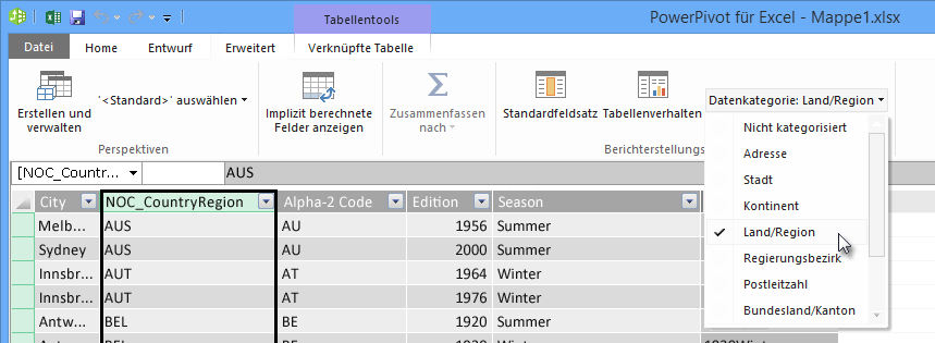Datenkategorien in PowerPivot