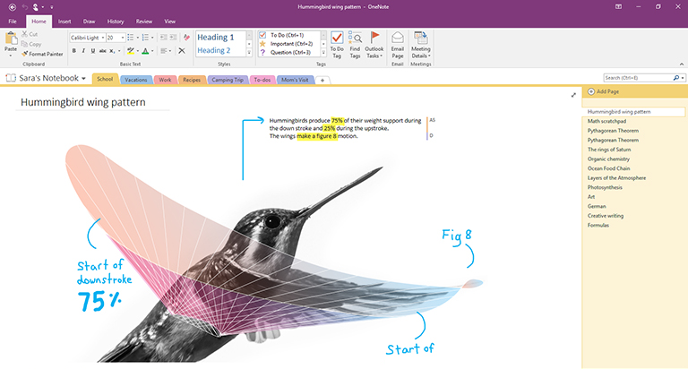 Screenshot von OneNote 2016