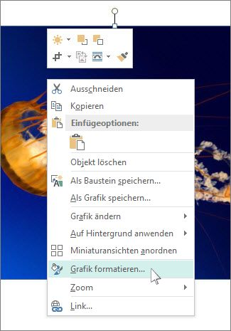 "Screenshot der Optionen unter ""Grafik formatieren"" in Publisher"