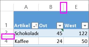 Doppelte Linien zwischen Zeilen bzw. Spalten kennzeichnen ausgeblendete Zeilen bzw. Spalten