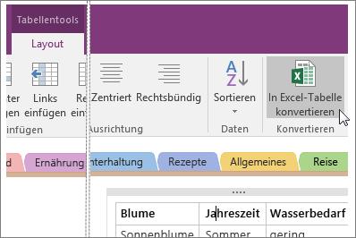 """Screenshot der Schaltfläche """"In Excel-Tabelle konvertieren"""" in OneNote 2016"""
