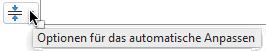 Das Tool zum Anpassen von Optionen wird angezeigt, wenn ein Platzhalter mit Text gefüllt wird.