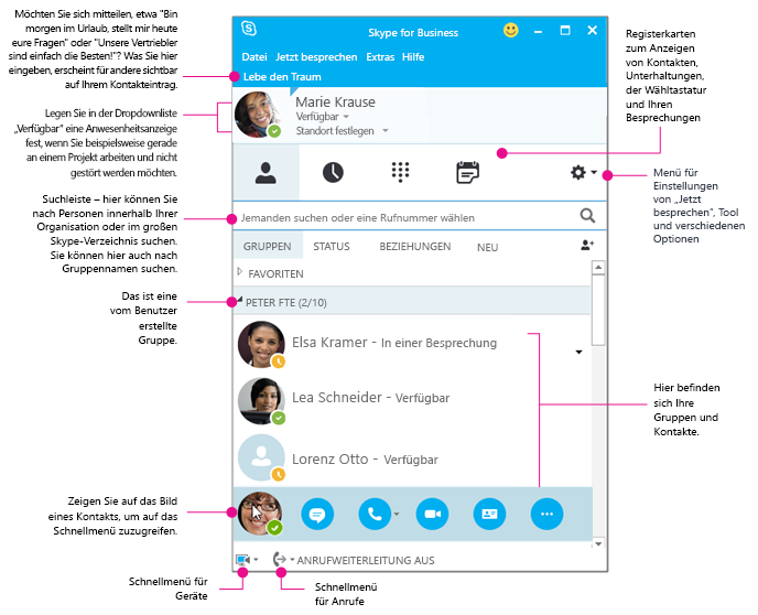 "Das Fenster ""Skype for Business-Kontakte"" in Diagrammform"