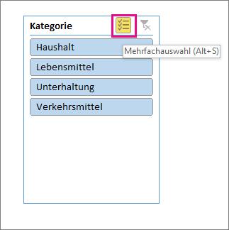 Datenschnittoptionen mit hervorgehobener Schaltfläche für Mehrfachauswahl