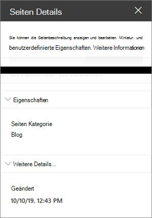 Seiten Detailbereich mit Seiten Kategorie des Blogs