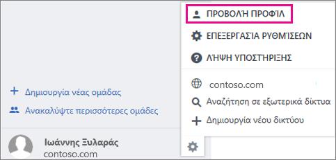 Στιγμιότυπο οθόνης της ρύθμισης προβολή προφίλ στο Yammer
